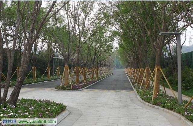 园林吧(www.Yuanlin8.com):售楼处景观设计浅析  尺寸之间现乾坤 一、核心点位 当前在建筑设计同质化现象严重的同时,景观成为给个各类楼盘提升自身价值品质的一个重要途径。售楼处,作为一个项目的销售和展示的核心,在楼盘销售环节占有重要的地位。因此售楼处景观环境的打造成为业主最为关心的问题之一。 二、主要特点 售楼处景观设计与商业运作关系密切,体现了消费主义在设计领域的诸多影响。该思潮的优劣有待争议,本文不参与该领域讨论,仅从如下几个方面进行技术特点的概括: 1、注重效果,快速见效 售楼处景观可