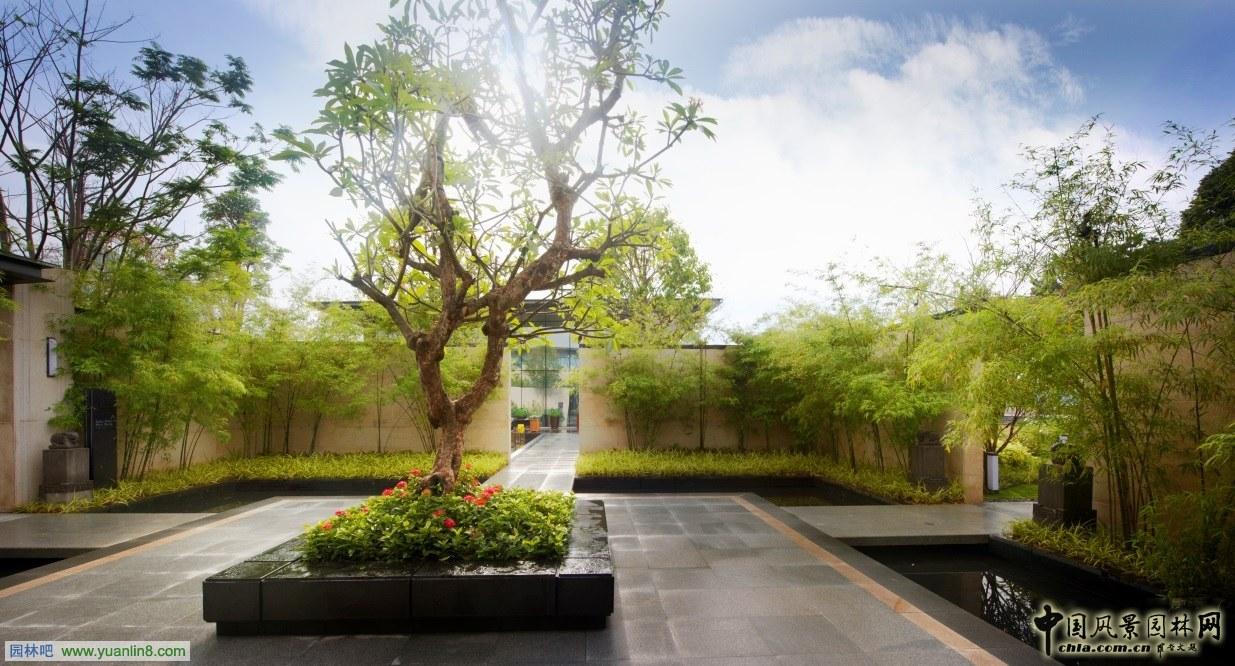 样板房四合院实景图-精品园林金奖 马来西亚富力 公主湾景观方案设计