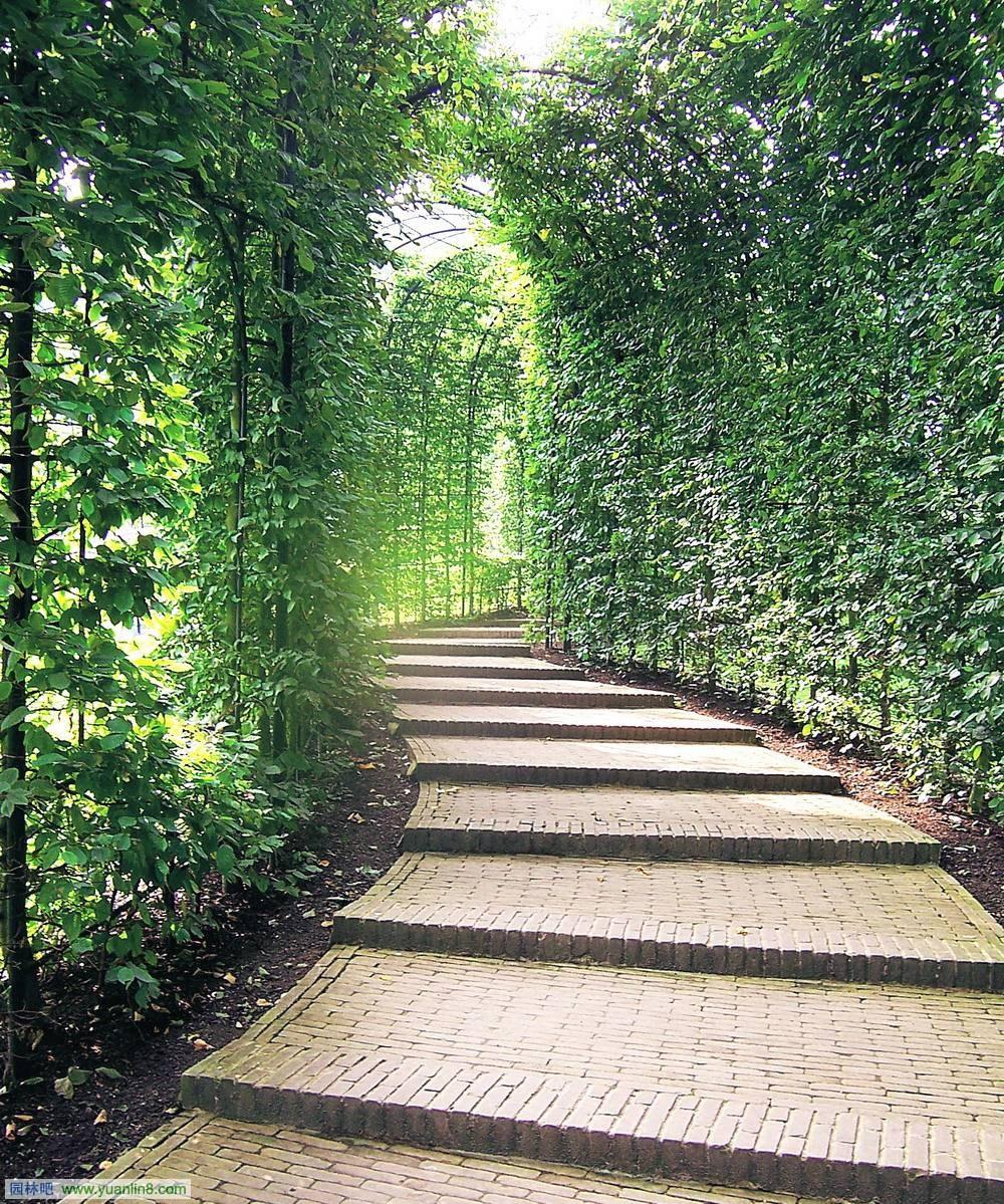 英國安尼克私家庭院景觀設計
