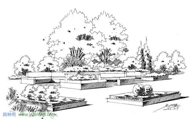景观手绘,从简单的线稿开始学起~ - 园林吧