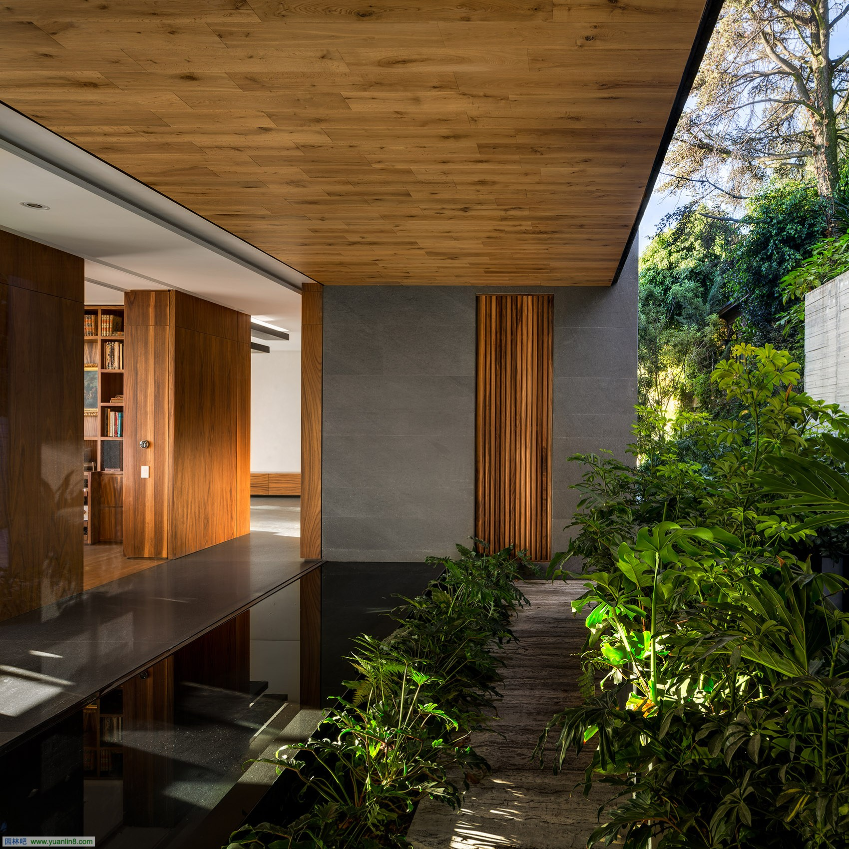 4house-p29-by-vgz-arquitectura