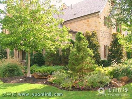 国外别墅庭院绿化景观实景