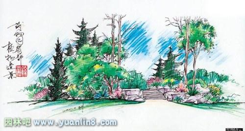 园林景观,树木,楼房,手绘效果图