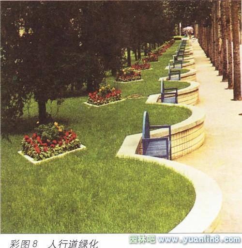 城市道路绿地设计中人行道绿化带的设计
