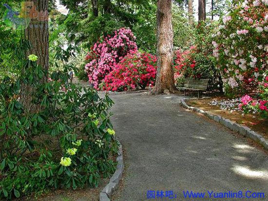 园林景观组图,山景,水景,小游园