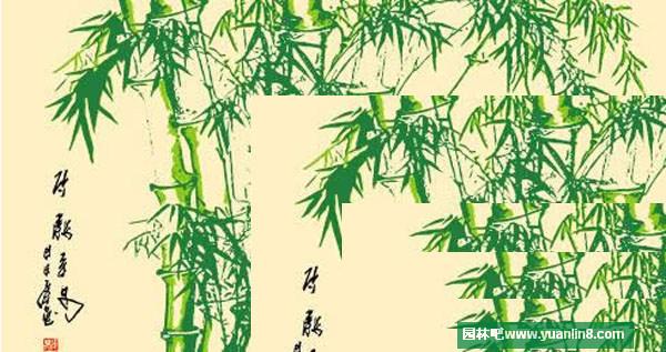 手绘竹子矢量素材图,纤维竹毛巾,水墨竹子图等