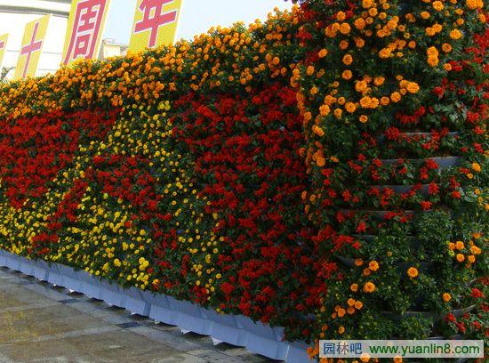 花坛设计,立体绿化,花墙,花球,花柱,花灯,花坛,花塔组合图