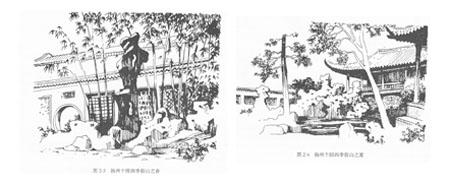 手绘花卉 线稿单体