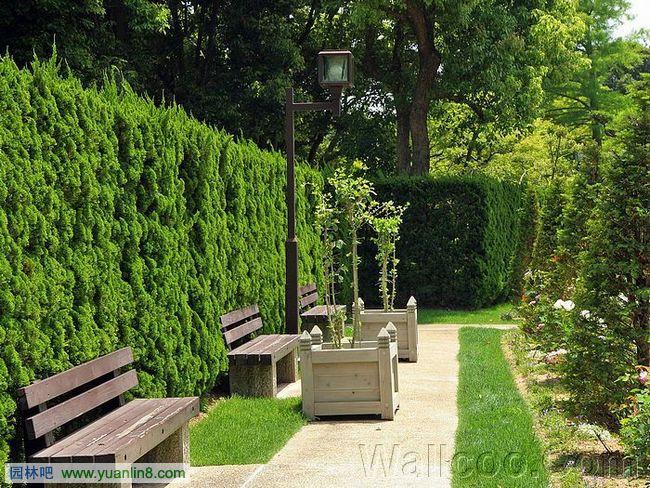 日式庭院景观设计组图欣赏[二]