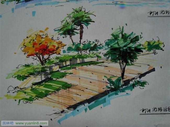 四小时景观快题设计--手绘表现-手绘作品