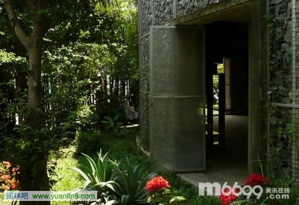 办公室里的热带丛林-室内设计_园林吧