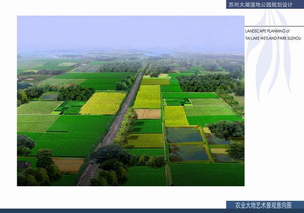 平面透视图_太湖湿地公园规划设计平面图效果图-规划设计_园林吧
