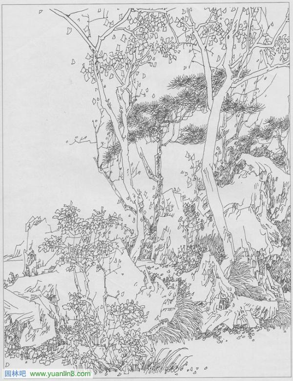 园林钢笔画手绘技法图