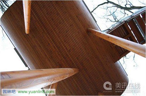 创意设计:树上的小木屋baumraum
