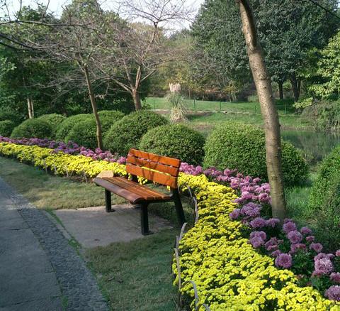 园林植物配置心得总结-规划设计
