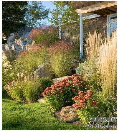 国外庭院景观鉴赏--景观植物与置石-规划设计_园林吧