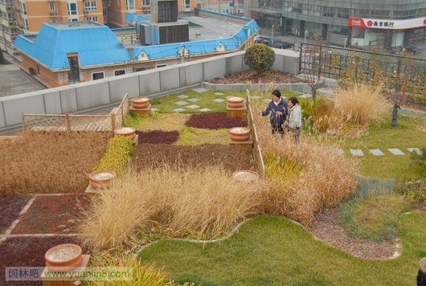 """北京城市空间的屋顶绿化、垂直绿化作为城市绿化的重要形式,在拓展城市绿色空间、美化环境,提升景观,优化生态、改善气候和生态服务功能方面,作用已经显现,城市空间立体绿化的社会认知度日益提升,越来越受到各级领导的重视。2010年将其纳入《北京市绿化条例》,首都绿委将其列入了全民义务植树运动尽责形式之一。2011年,全民义务植树运动开展30周年之际,中共北京市委将其作为""""十二五""""城市绿化重点,政府专门为此发了红头文件。   目前的屋顶绿化,无论北京,还是外埠、国外,都大体分为三种类型,"""