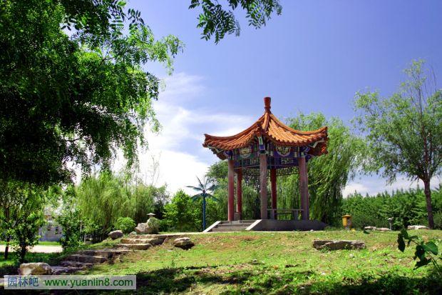 龙画法_河北经贸大学校园景观实景及规划设计总平面图-景观规划_园林吧