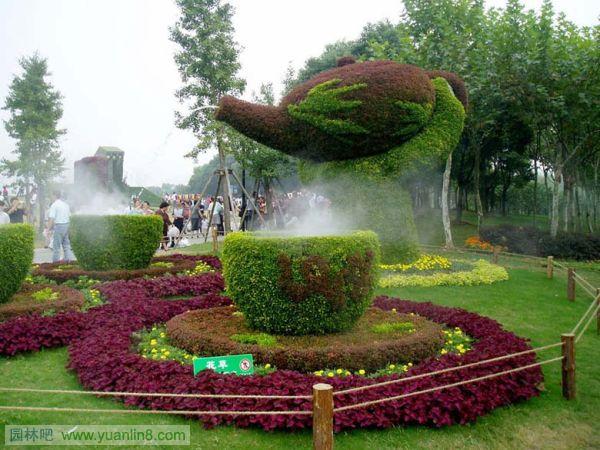 植物配景与造景_五色草-植物造景与植物造型的选择-景观规划_园林吧