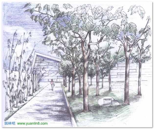 园林手绘图铅笔图片