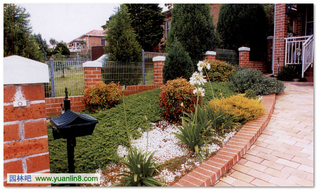 一般家庭较少使用白色花卉植物,但在狭长的庭园设计中,如一端配置白色